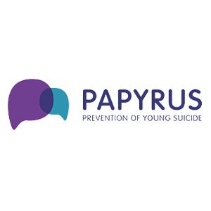 WordPress Web Design for Papyrus